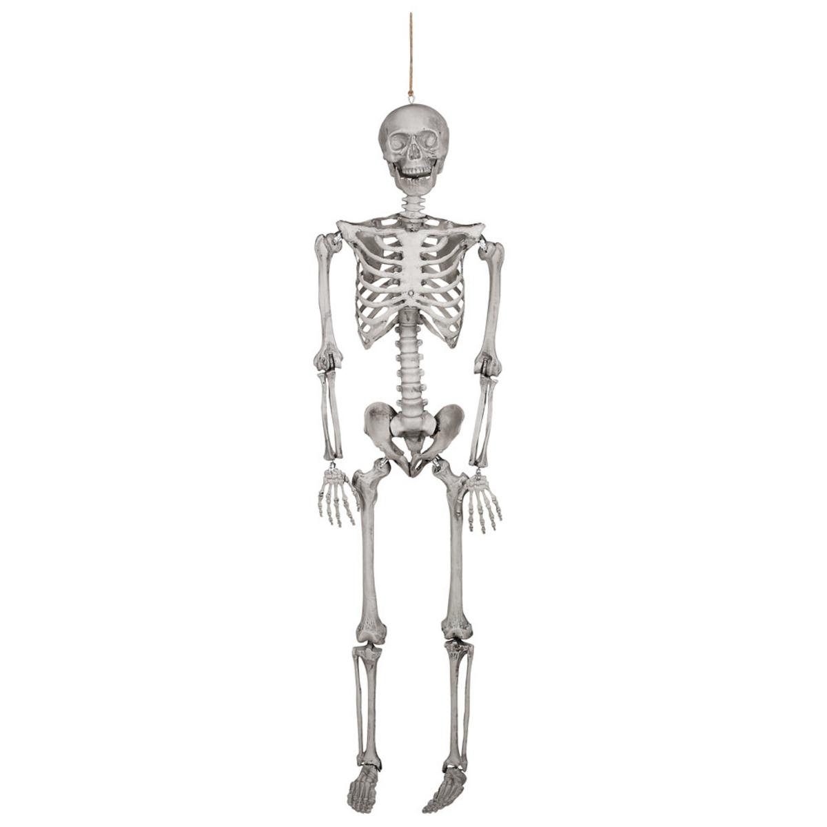 Bild 4 von Großes Halloween Skelett