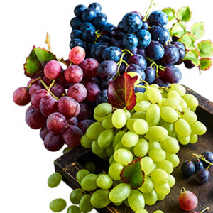 Italien Tafeltrauben, rot, blau, Mix, kernlos Kennzeichnung siehe Etikett, jede 500-g-Schale