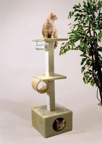 Rohrschneider Cats World