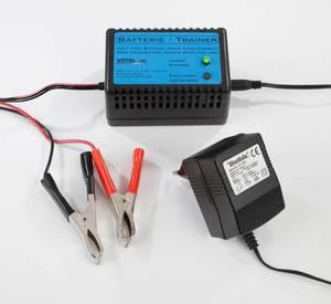 Akku Trainer - Autobatterielader Wetekom