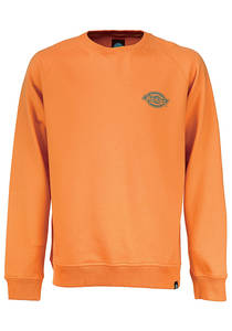 Dickies Briggsville - Sweatshirt für Herren - Orange