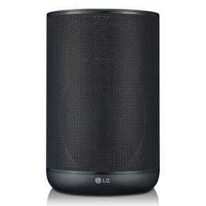 LG WK7, Schwarz - Smarter Lautsprecher (30W, WLAN, Bluetooth, Sprachsteuerung, Meridian Audio)