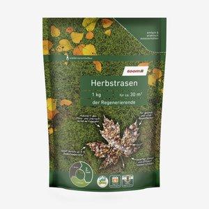 toomEigenmarken -              Herbstrasen 'Der Regenerierende' 1 kg