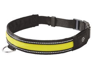 ZOOFARI® Hundehalsband LED