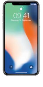iPhone X 256 GB Space Grau