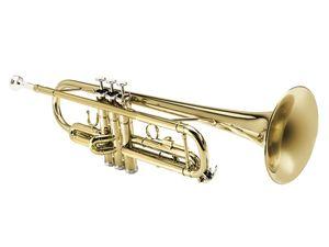 Sheffield Trompete