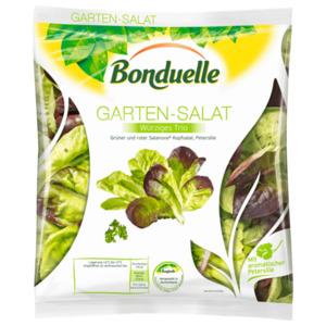 Bonduelle Garten-Salat Würziges Trio 150g