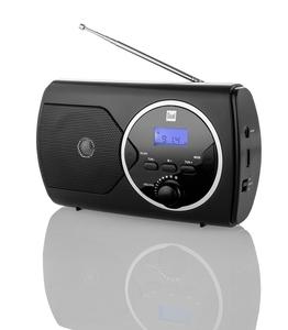 Dual PLL-Radio mit UKW-Empfang P10 - schwarz