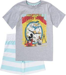 Disney Mickey Mouse & friends Set T-Shirt & Sweatshorts Gr. 116/122 Jungen Kinder