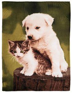 Dekor Wohndecke mit Tiermotiv - Hund & Katze