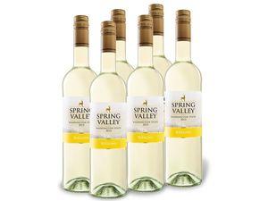 6 x 0,75-l-Flasche Weinpaket Spring Valley Riesling Washington State, Weißwein