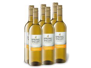 6 x 0,75-l-Flasche Weinpaket Spring Valley Chardonnay California trocken, Weißwein