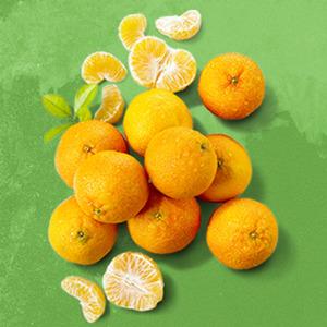 """Spanien Mandarinen """"Primasol"""", Kennzeichnung siehe Etikett, jedes 500-g-Netz"""
