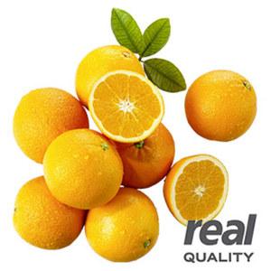 Südafrika Orangen, Kennzeichnung siehe Etikett, jedes 1,25-kg-Netz
