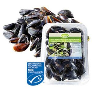 MSC Miesmuscheln Extra aus Aquakultur mit Setzlingen aus einer MSC-zertifizierten, nachhaltigen Fischerei, Nordostatlantik,  jede 1-kg-Schale (Abtropfgewicht)
