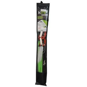 Lenkdrache im grünen Design mit 2 Schnüren und Tragetasche