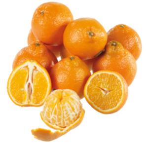 EDEKA Selection Mandarinen