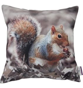 Kissenhüllen »PRINTED SQUIRREL«, Tom Tailor