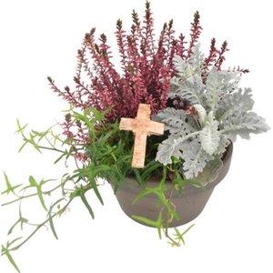 Tontopf bepflanzt mit Kreuz Topf-Ø ca. 18 cm