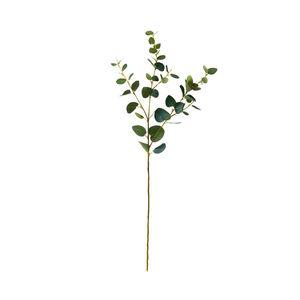 4x Eukalyptuszweig