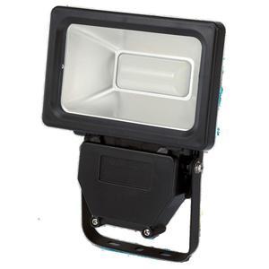FLECTOR                 LED-Strahler, 30 Watt