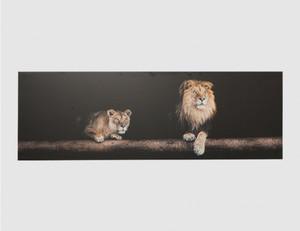 Bild Löwen