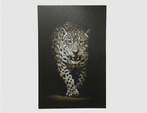 Bild Leopard klein