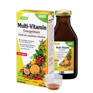 Salus Bio Multi-Vitamin Energetikum