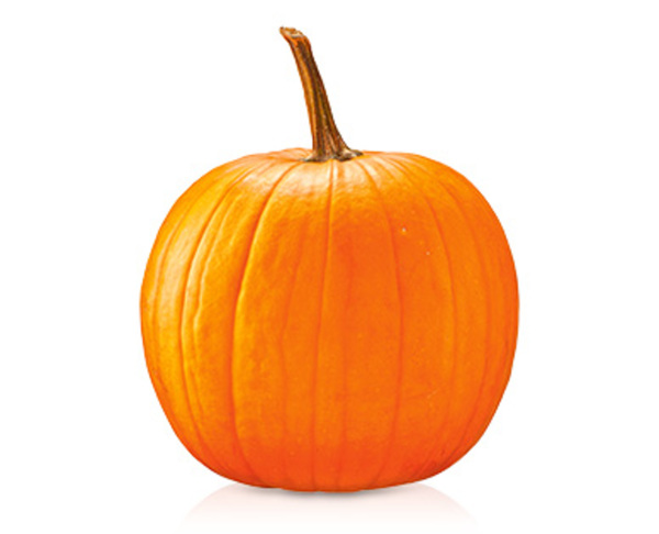 Halloween Angebote