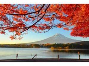 Japan intensiv – Rundreise