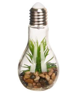 LED-Glühbirne - Sukkulente - Länge ca. 18,5 cm