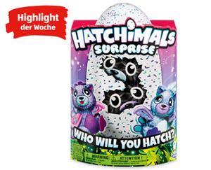 HATCHIMALS Surprise™