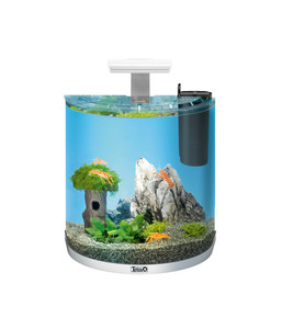 Tetra AquaArt LED Explorer-Line Crayfish, 30 Liter, weiß