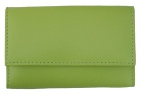3F Lederetui (Rindleder) 4-tlg. mit Druckknopf, grün
