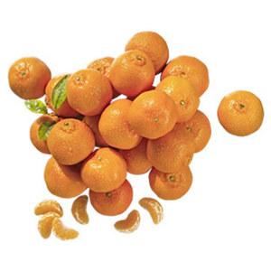 Spanien Mandarinen Kennzeichnung siehe Etikett, jedes 1,5-kg-Netz