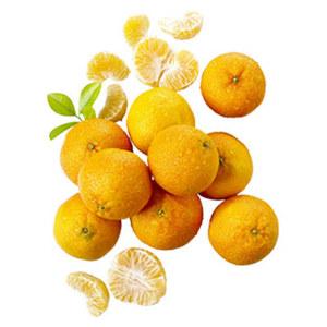"""Spanien Mandarinen """"Clemenules"""" Kl. I, je 1 kg"""