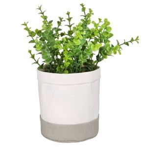 Grünpflanze, Kunststoff, 21 cm