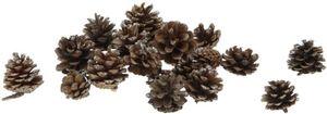 Tannenzapfen - aus Holz - ca. 200 g