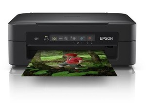 Epson Multifunktionsgerät XP-255-Copy | B-Ware