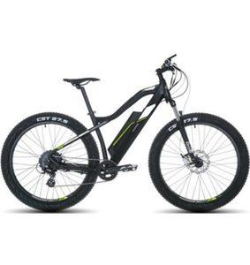 Telefunken E-Bike »Aufsteiger M900«, 9 Gang Shimano Acera Schaltwerk, Kettenschaltung, Heckmotor 250 W