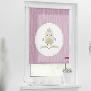 Rollo Klemmfix, ohne Bohren, Verdunkelung, Sweety Gr. 45 x 150