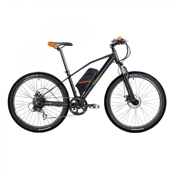 SachsenRad E-Racing Bike R6