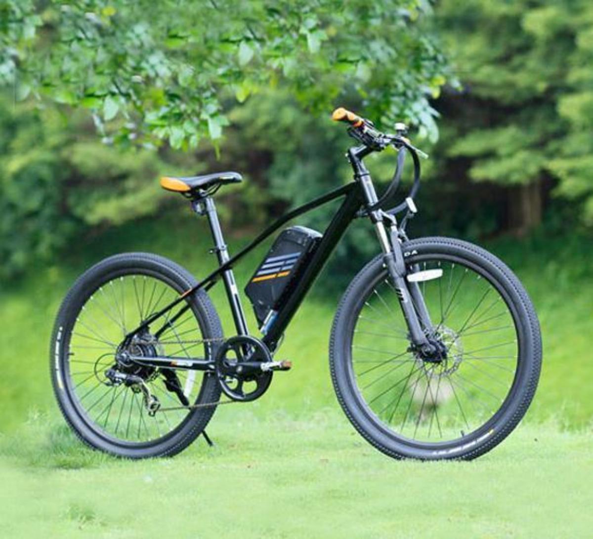 Bild 5 von SachsenRad E-Racing Bike R6