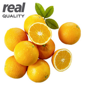 Spanien Orangen Kennzeichnung siehe Etikett, jedes 1,5-kg-Netz