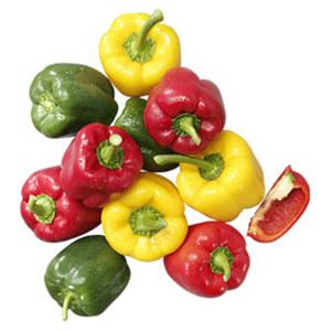 Spanien Paprika rot, gelb oder grün Kl. I,  je 1 kg