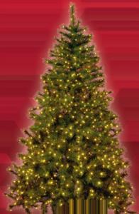 Tarrington House Künstlicher Weihnachtsbaum 180 cm