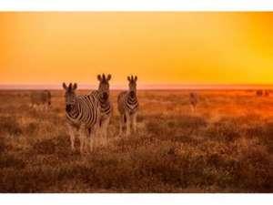 Namibia – Rundreise
