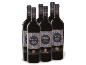 6 x 0,75-l-Flasche Weinpaket Duca di Sasseta Espera Primitivo Puglia IGT lieblich, Rotwein