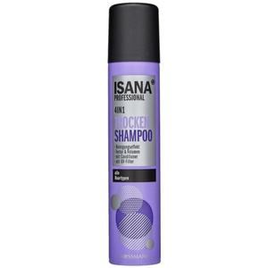 ISANA Professional Trockenshampoo 4in1 1.25 EUR/100 ml