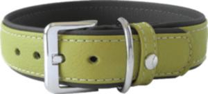 Das Lederband Hundehalsband Amsterdam, Lime / Lava, Breite 25 mm / Länge 30 cm